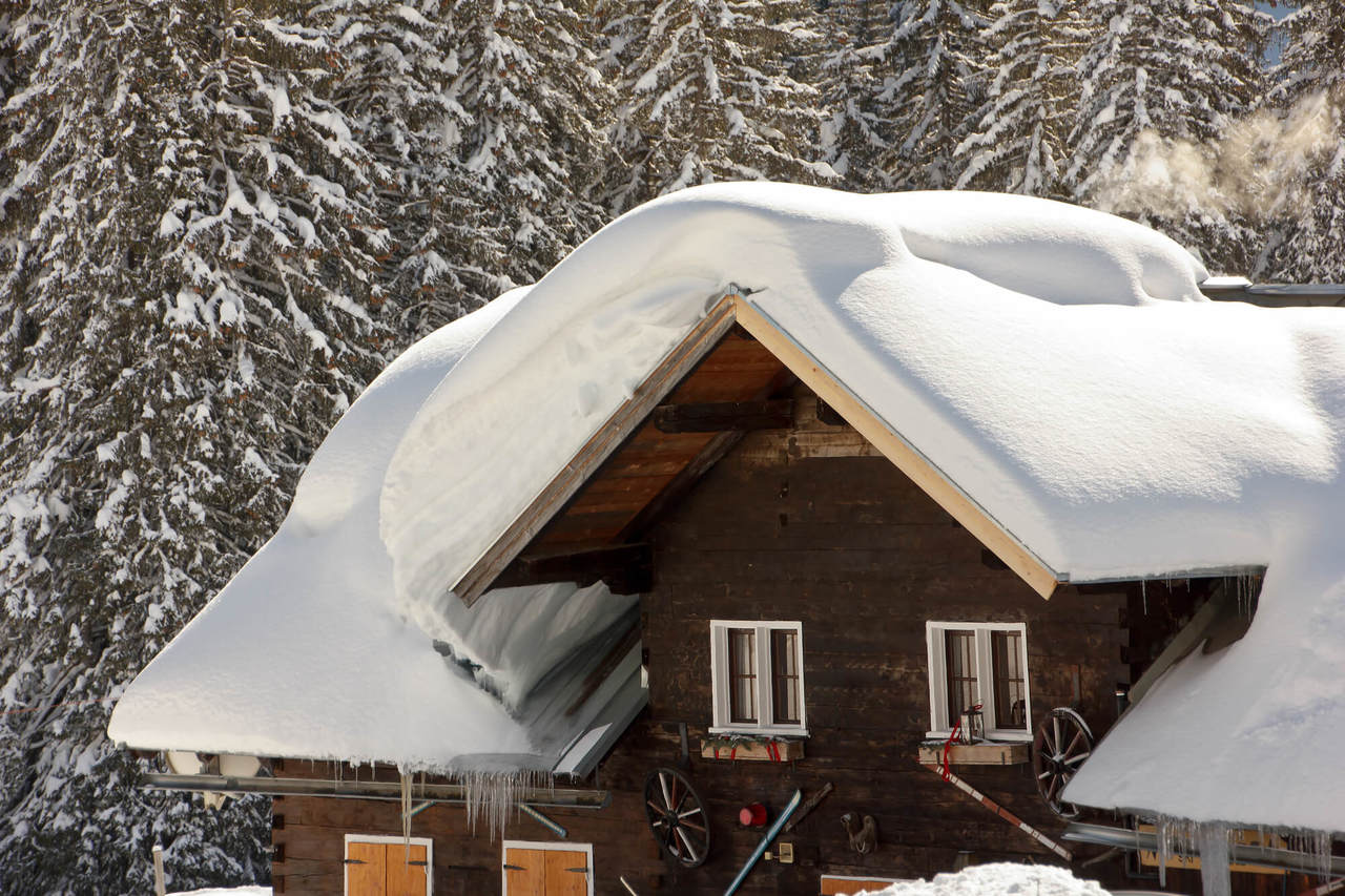 махачкале, снег на крыше дома картинки удивляйтесь количеству шерсти